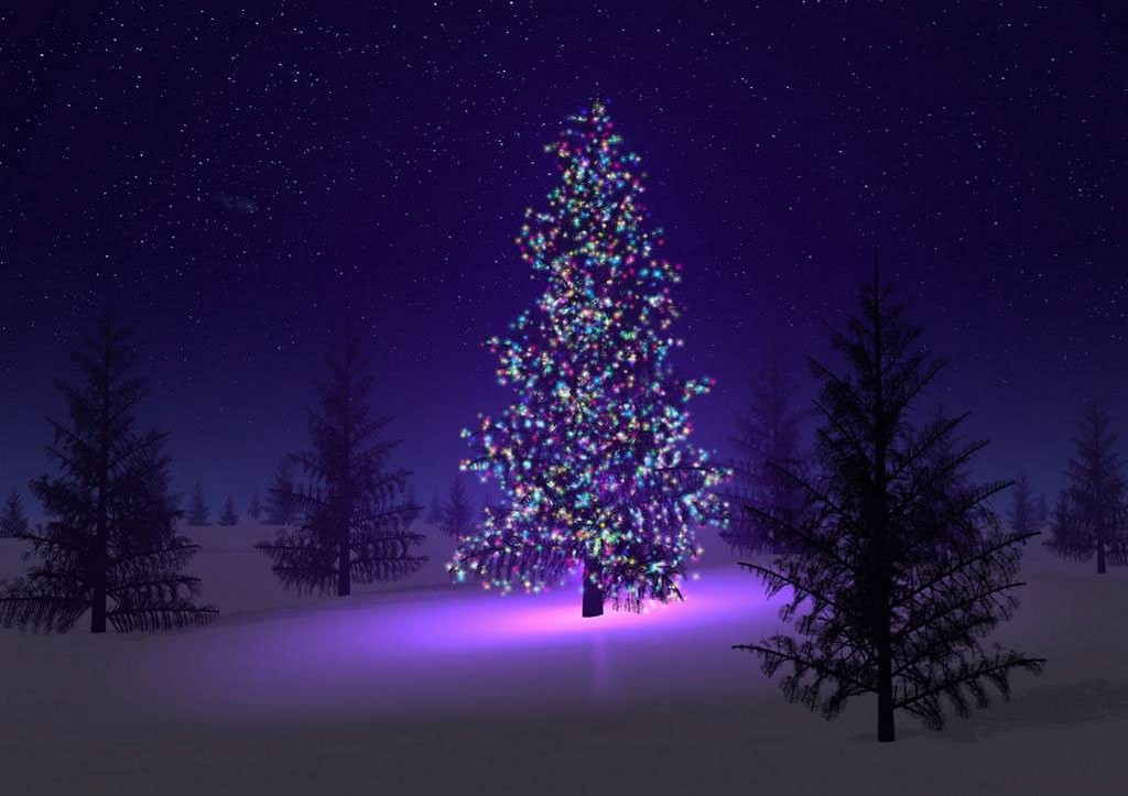 Purple Christmas Tree.Purple Christmas Tree Maynineteen
